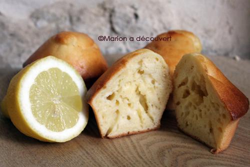 Muffins ricotta/citron, pour ensoleiller vos gouters !