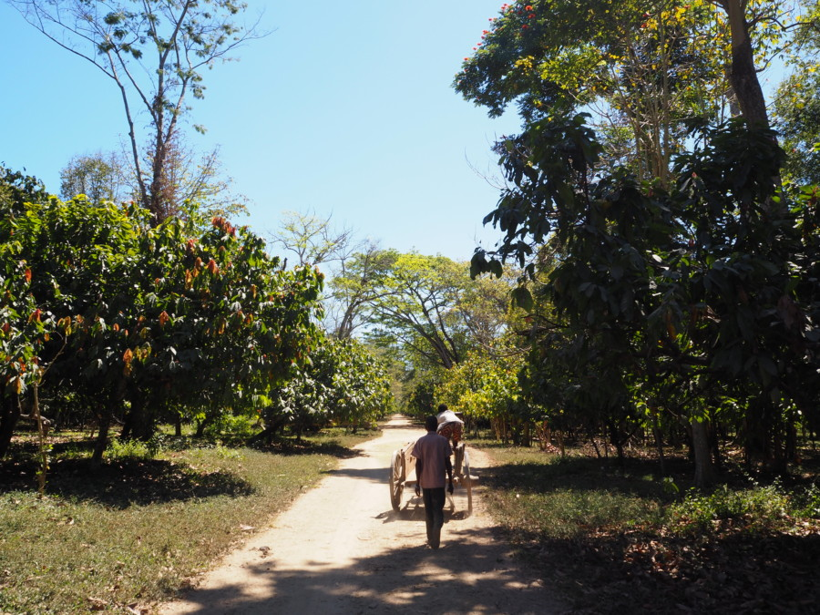 Madagascar, terre de trésors…