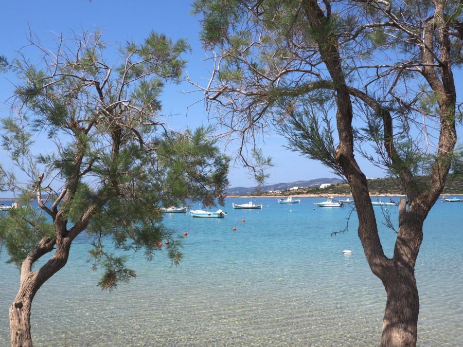 Santorin, Paros et Mykonos : voyage à travers Les Cyclades…